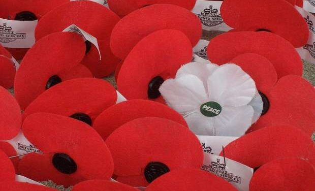 White poppy peace campaign sparks controversy