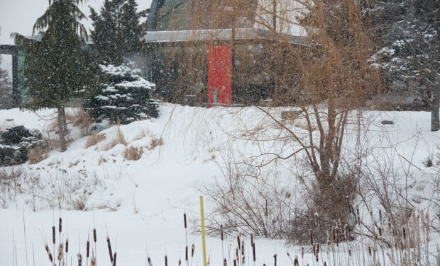 Conservation areas in GTA collide with cold conditions