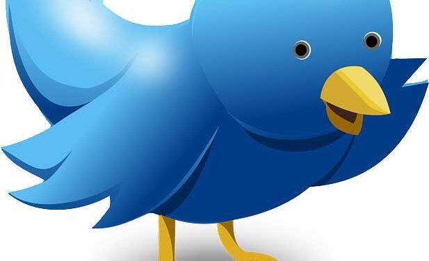 Twitter's Eight-Year Anniversary