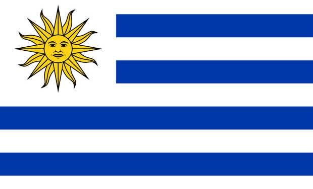 2014 FIFA World Cup Preview   Uruguay