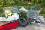 Interesting items pulled from the Humber River