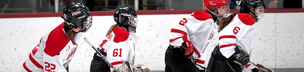Toronto girls hockey league denies 'no-touching' policy