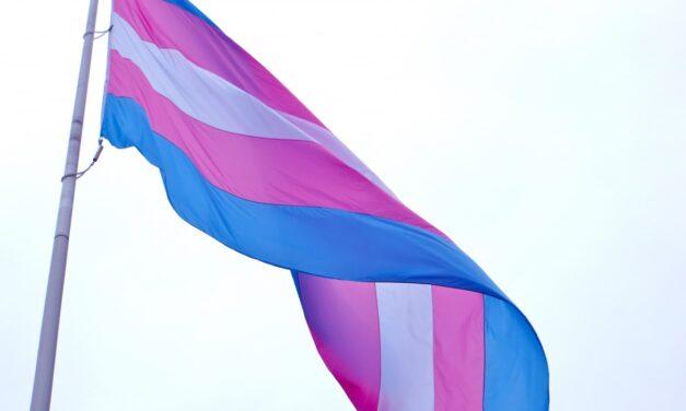 Humber screens trans documentary for Awareness Week