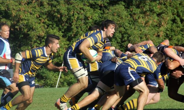 Humber rugby varsity teams suspended, alleged code of expectations violations