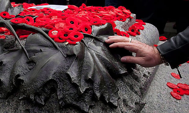 Where to honour veterans and fallen soldiers this Remembrance Day