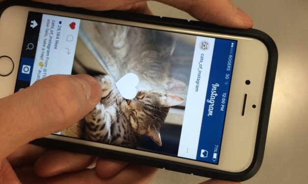 Instagram feed changes could be a 'huge win' for advertisers, expert says
