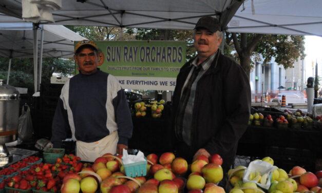Condos push farmers' market out of Queen East neighbourhood