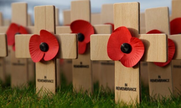 Remembrance Day should be remembered more, study shows