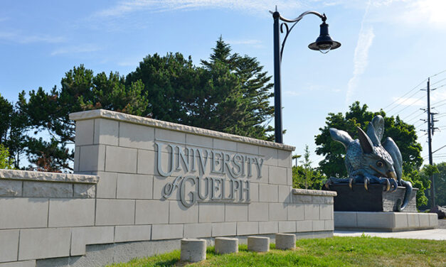 University of Guelph professor suspended after insulting student