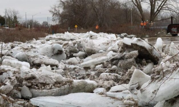 Brantford floods forces thousands, and their pets, out of their homes