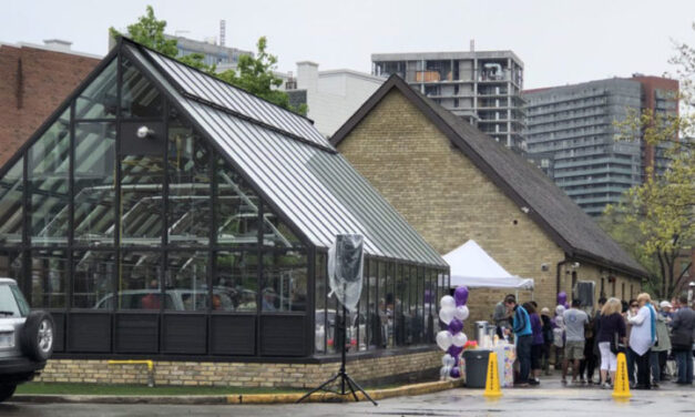 Greenhouse project can nurture mental health, experts say