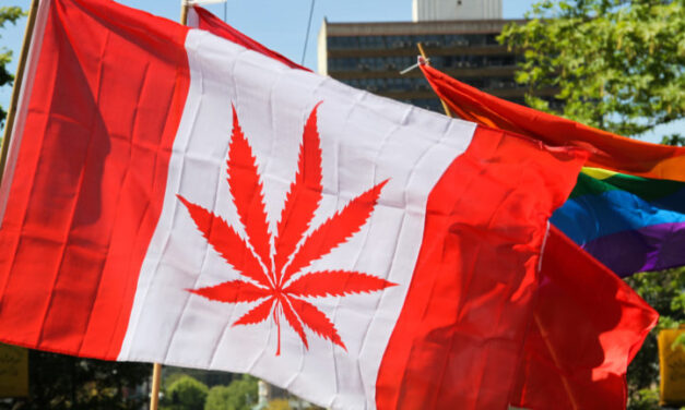 Commons approves cannabis bill, sends it back to Senate — again