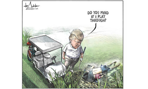Canadian cartoonist let go from New Brunswick newspapers after viral Trump cartoon