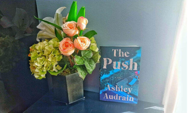 Toronto author gains global recognition for debut novel 'The Push'