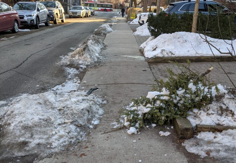 Snow, ice and other obstacles (like this discarded Christmas tree) limit accessibility for those who use wheelchairs or other mobility devices on Toronto's sidewalks.