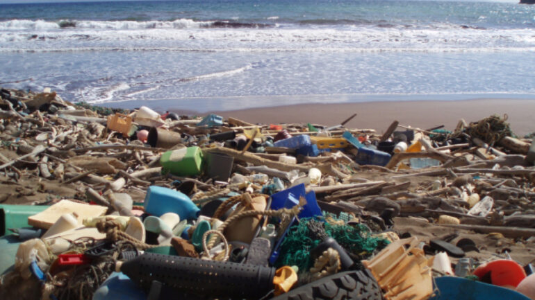 Various types of plastic litter the Kanapou Bay, on the Island of Kaho'olawe in Hawaii, a hotspot for marine debris.